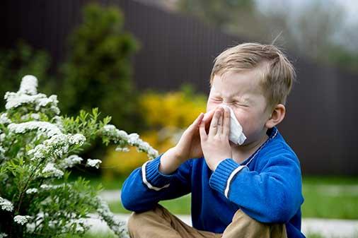 kinderarzt-allergologie